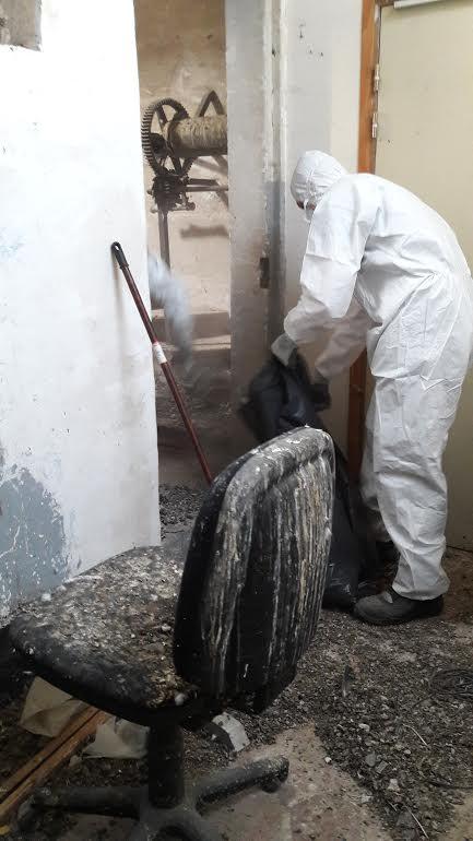 Nettoyage dégât de fiente de pigeons Oise
